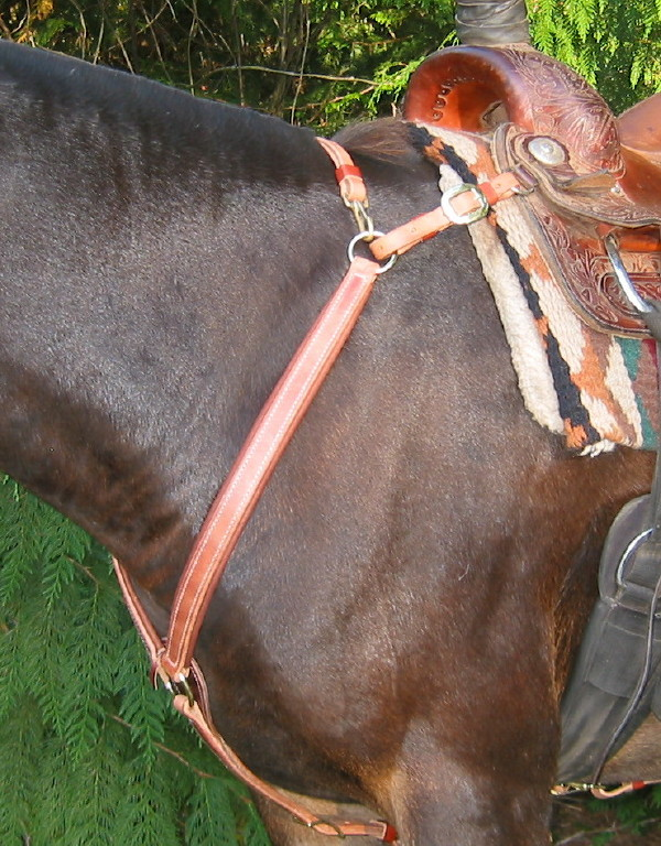 Pack Saddles & Accessories  Hobbles, Panniers, Top Packs, and More!